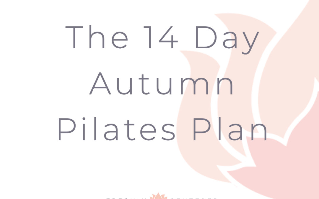 14 day Pilates Plan