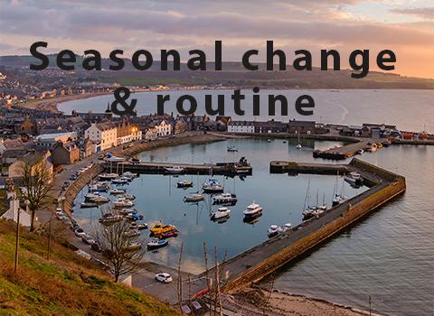 Seasonal change & routine
